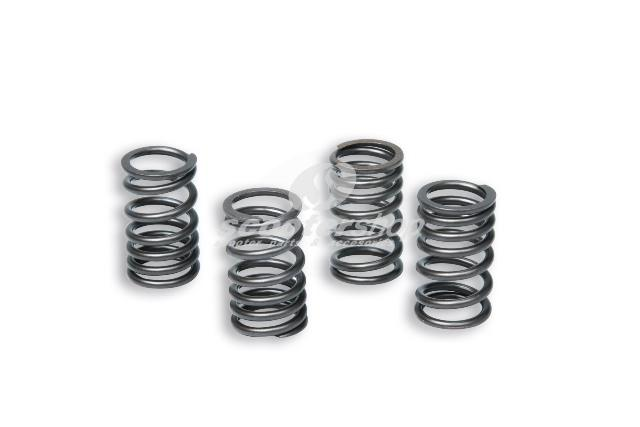 Valve springs Malossi for Honda SH/SCOOPY 300ie